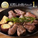 【ふるさと納税】薬肉!栄養面でも優れた天然シカの極上肉人気の一品