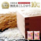 【ふるさと納税】30年度新米!無洗米宮崎コシヒカリ10kg人気の一品!