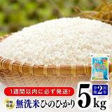 【ふるさと納税】無洗米宮崎ひのひかり5kg人気の一品!