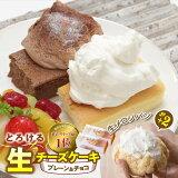 【ふるさと納税】人気の新食感!とろける生チーズケーキ(プレーン&チョコ)