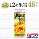 【ふるさと納税】サンA1日分の12の果実48本セット