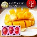 【ふるさと納税】完熟マンゴー『レッドクイーン』3玉×2L(合