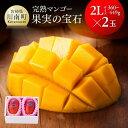 【ふるさと納税】果実の宝石マンゴー2L2玉【個数限定】※20...