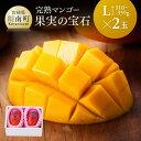【ふるさと納税】※糖度15度以上※果実の宝石マンゴーL 2玉