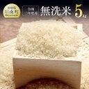 【ふるさと納税】※新米※『令和元年産』農家直送!無洗米こしひかり 5kg