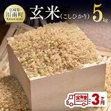 【ふるさと納税】農家直送!玄米(こしひかり)定期便