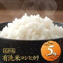【ふるさと納税】JA尾鈴米(有洗米)コシヒカリ5kg