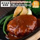 【ふるさと納税】鹿児島県産 黒豚 煮込み ハンバーグ デミグ