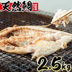 【ふるさと納税】海産物セット 天然鯛!旬の魚の干物セット(総2.5kg) 獲れたてタイと旬の魚介類♪【吹上町漁協】