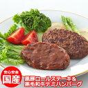 【ふるさと納税】黒豚ロールステーキ&黒毛和牛デミハンバーグ【