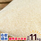 【ふるさと納税】鹿児島県日置市 東市来産のお米 計11kg 自家精米【こけけ特産品販売組合】