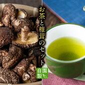 【ふるさと納税】お茶・椎茸セット【自園・自製とくだ】