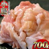 【ふるさと納税】黒毛和牛小腸ホルモン(もつ鍋・焼肉用)700g【バクロ】