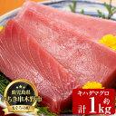 【ふるさと納税】天然キハダマグロ (約1kg)柵でお届け!肉...