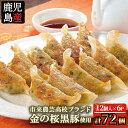 【ふるさと納税】鹿児島県産!金の桜黒豚餃子(16g×12個)...