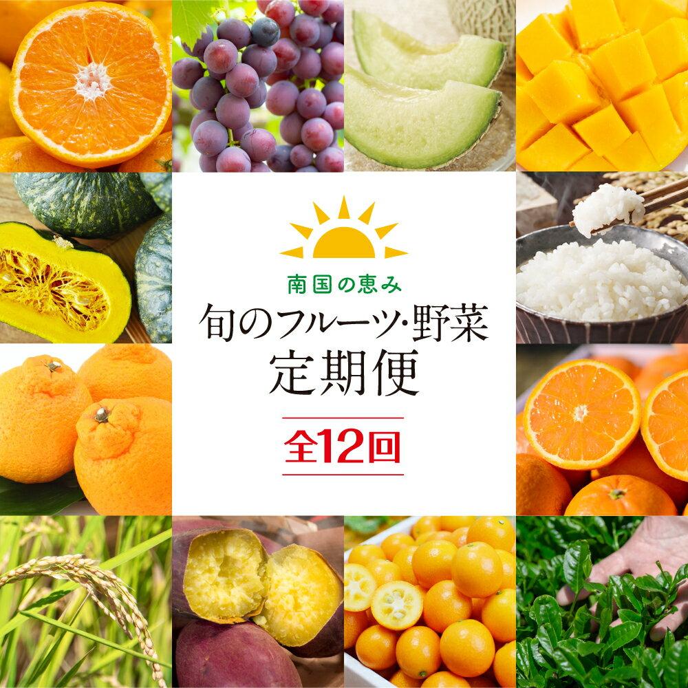 南国の恵み 旬のフルーツ・野菜定期便 全12回