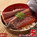【ふるさと納税】楠田の極うなぎ蒲焼(大隅産)超特大サイズ5尾