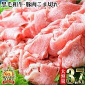 B-056限定!九州産豚コマ切れ・和牛コマ切れ