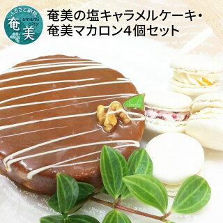 奄美の塩キャラメルケーキ・奄美マカロン