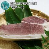 【ふるさと納税】鹿児島県奄美大島産「塩豚」1kg