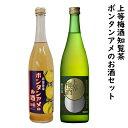 【ふるさと納税】上等梅酒知覧茶・ボンタンアメのお酒セット...