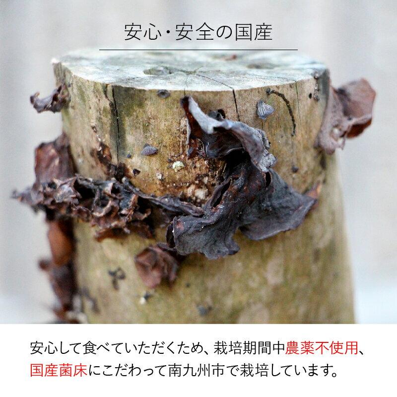 【ふるさと納税】国産きくらげスライス・ホールセット