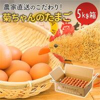 【ふるさと納税】菊ちゃんちの新鮮たまご5kg箱
