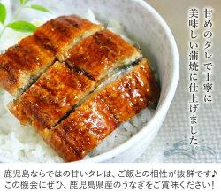 【ふるさと納税】鹿児島県産カットうなぎ蒲焼300g以上 画像2