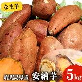 【ふるさと納税】鹿児島産安納芋5kg【甘いも販売所】
