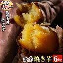 【ふるさと納税】鹿児島県産冷凍焼き芋紅はるか6kg!鹿児島県...