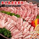 【ふるさと納税】鹿児島県産黒豚焼肉セット 豚肉バラ、ロース肉...