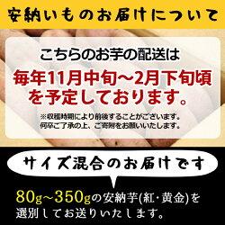【ふるさと納税】種子島産 安納芋(10kg)【砂坂展恵】 画像1