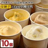 【ふるさと納税】アイスクリーム詰め合わせA