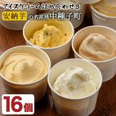 【ふるさと納税】アイスクリーム詰め合わせB