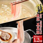 【ふるさと納税】B-2011鹿児島黒豚&茶美豚食べ比べセット(総1.2kg)【種子屋久農業協同組合】