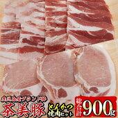 【ふるさと納税】L-701茶美豚焼肉・とんかつセット(総900g)【種子屋久農業協同組合】
