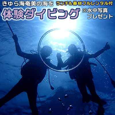 【ふるさと納税】きゅら海奄美の海を体験ダイビング(ランチ&器材フルレンタル付)