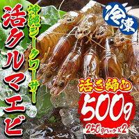 【ふるさと納税】冷凍沖縄シークワーサー活クルマエビ活き締め(500g)