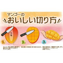 【ふるさと納税】【2021年夏発送】本部町産マンゴー(秀品)(1kg詰め) 画像1