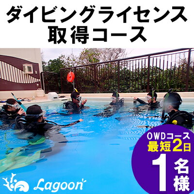 【ふるさと納税】ダイビングライセンス取得コース(OWDコース最短2日)1名様