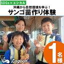 【ふるさと納税】【SDGs×エシカル】沖縄から自然環境を学ぶ!『サンゴ苗作り体験』(1名様)
