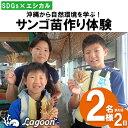 【ふるさと納税】【SDGs×エシカル】沖縄から自然環境を学ぶ!『サンゴ苗作り体験』(2名様または2株)