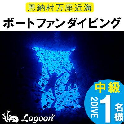 【ふるさと納税】恩納村万座近海ボートファンダイビング中級(AOW)2DIVE(1名様)
