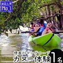 【ふるさと納税】億首川マングローブ・カヌー体験【1名】