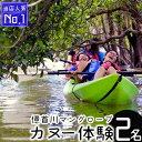 【ふるさと納税】億首川マングローブ・カヌー体験【ペア】