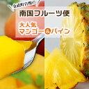 【ふるさと納税】金武町自慢の大人気マンゴー&パイン 南国フル