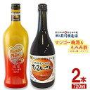 【ふるさと納税】マンゴー梅酒&もろみ酢「むるん酸」スイート