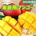 【ふるさと納税】【2021年発送】渡口ファームの家庭用マンゴ...