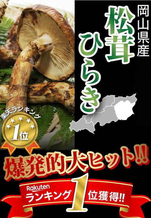 国産松茸ひらき小さめ約230g2〜8本程度まつたけマツタケ利平栗1kgオマケ付き岡山SSS10j