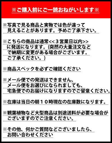 東京堂『お花のテープ#5オリーブグリーン』